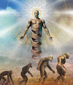 La Hiérarchie Spirituelle dans SPIRITUALITE c'est quoi ? evolutionadn-256x300