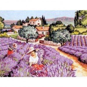 Les rêves prémonitoires dans Rêves senteurs-provencales-300x300
