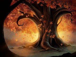 Histoire du mois de septembre dans Astrologie et Esotérisme arbre-nuit-300x225
