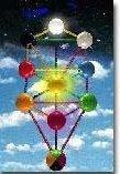 arbre-chakra dans SAGESSE