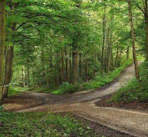 Notre Choix, notre Chemin dans Chemin spirituel e-300x279