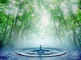 Comment transformer l'eau en vin dans PENSEE MAGIQUE - LEITMOTIV et RITUELS nature