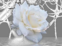 La poupée et la rose blanche dans Mythologie/Légende images-4