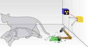 Un chat vivant et mort à la fois dans Expériences telechargement1
