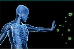 renforcer-système-immunitaire-dien-chan2-300x232